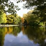 Autumn Website Pictures
